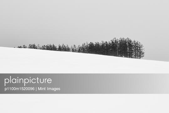 p1100m1520096 von Mint Images