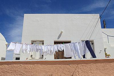Frisch gewaschen - p0452261 von Jasmin Sander
