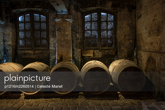 Barrels in winery cellar - p1216m2260514 by Céleste Manet
