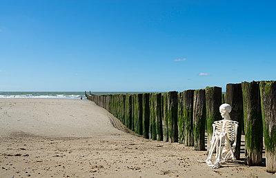 Skelet aan zee - p1132m1159184 by Mischa Keijser