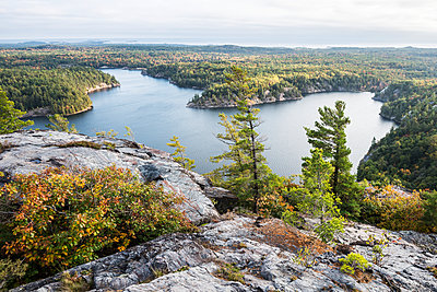Beautiful view of a fall forest and George Lake from the mountain top; Killarney, Ontario, Canada - p442m1085046f by Sergey Orlov