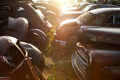 Vintage cars abandoned in scrap yard - p429m875757f by Zero Creatives