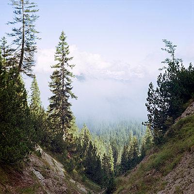 Karwendel, Austria - p1214m1017179 by Janusz Beck