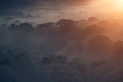 Morning mist over Welsh Valley - p1280m2124694 by Dave Wall