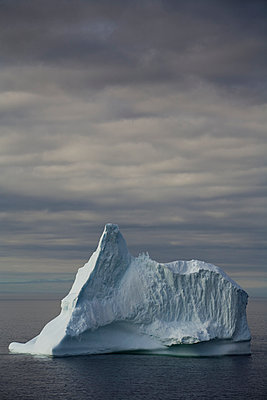 Iceberg, Twillingate, Newfoundland And Labrador - p442m936056 by John Sylvester