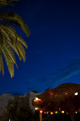 Tunis - p993m1125140 by Sara Foerster