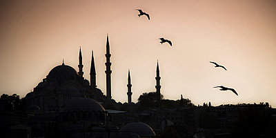 Silhouette of the Suleymaniye Mosque - p1062m871856 by Viviana Falcomer