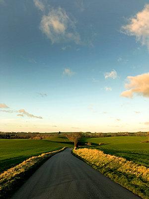 In the countryside in Denmark - p382m2100257 by Anna Matzen