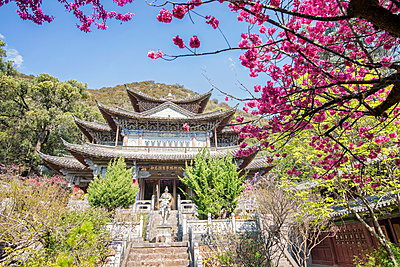 Fu Guo Temple, Five Phoenix Building (formerly Buddhist Cloud Building) in spring, Lijiang, Yunnan, China, Asia - p871m947325 by Andreas Brandl