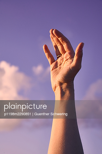 Hand in the evening light - p1198m2290851 by Guenther Schwering