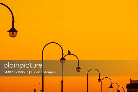 Golden sunset in Melbourne with street lamps  - p1487m2150537 by Ludovic Mornand