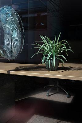 Ventilator und Zimmerpflanze in Büro - p1340m1558587 von Christoph Lodewick