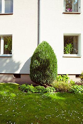 Spießiger Vorgarten - p432m1424178 von mia takahara