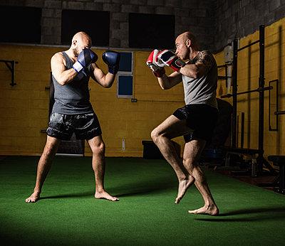 Thai boxers practicing boxing - p1315m1198938 by Wavebreak