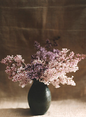 Spring lilacs in wooden vase  - p3313068 by Don Freeman