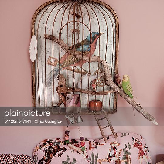 Parakeet on cage - p1128m947541 by Chau Cuong Lê