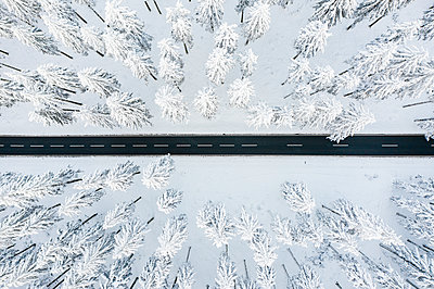 Wintry road and forest - p713m2289245 by Florian Kresse