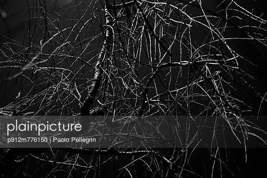 p912m776150 von Paolo Pellegrin
