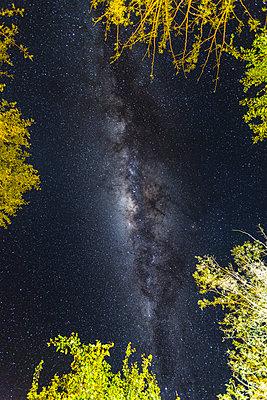Botswana, milky way - p300m1355859 by Stephan Rech