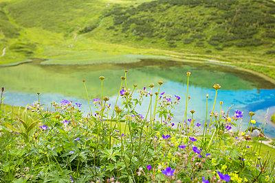 Idyllischer See - p432m917783 von mia takahara