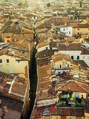 Toskana, Lucca - p1482m1564833 von karsten lindemann