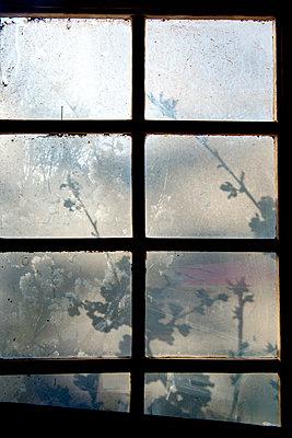 Blick aus einem Sprossenfenster - p451m1225407 von Anja Weber-Decker