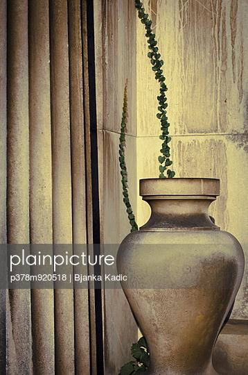 Cemetery urn with ivy - p378m920518 by Bjanka Kadic
