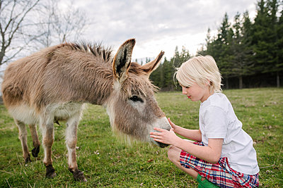 Canada, Ontario, Kingston, Boy with donkey in field - p924m2283079 by Viara Mileva