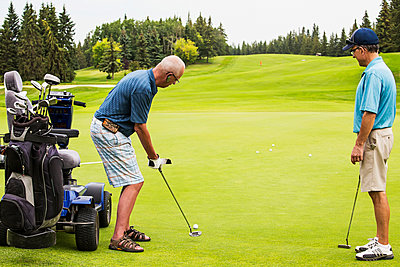 An able bodied golfer teams up with a disabled golfer using a specialized powered golf wheelchair and putting together on a golf green playing best ball; Edmonton, Alberta, Canada - p442m2019736 by LJM Photo