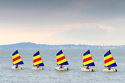 Five Optimist sailors - p977m858464 by Sandrine Pic