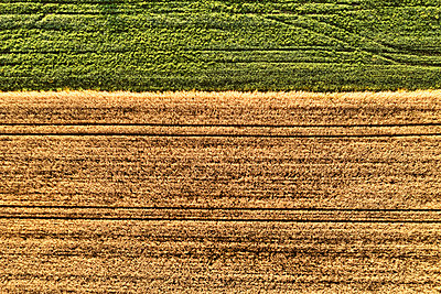 Drone photography of two arable corn field and meadow - p1312m2103828 by Axel Killian