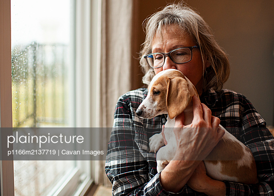 60 year old woman holding her new dachshund puppy at home by window - p1166m2137719 by Cavan Images