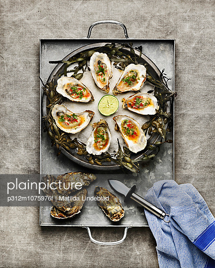 Oysters on plate - p312m1075976f by Matilda Lindeblad