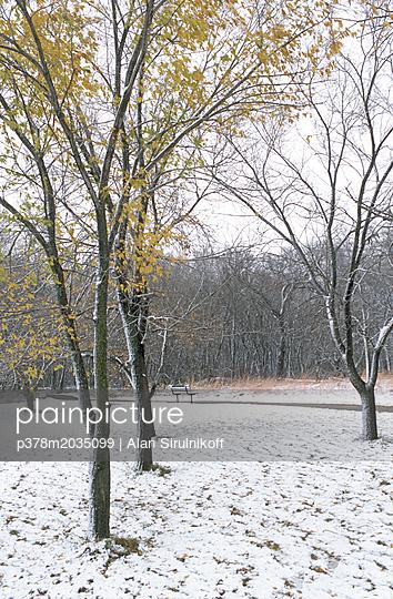 p378m2035099 von Alan Sirulnikoff