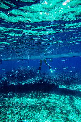 Snorkeling in Indian ocean - p1108m1118845 by trubavin
