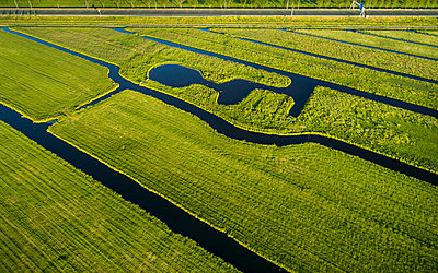 Netherlands, Field with water ditches - p1132m2196967 by Mischa Keijser