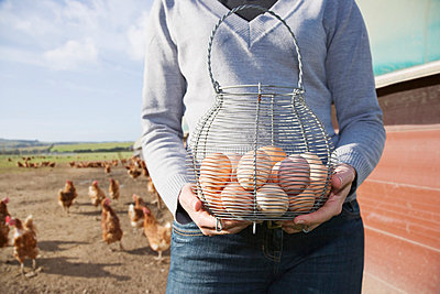 Farmer holding basket of eggs near chickens - p6417799f by Anthony Lee
