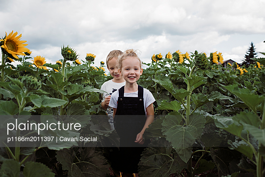Portrait of sister with brother walking amidst sunflowers against cloudy sky at farm - p1166m2011397 by Cavan Social