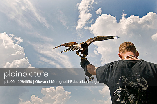 Falconers - p1403m2294650 by Giovanni Mereghetti/Education Images