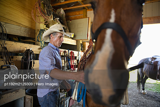 Rancher adjusting saddle on horse in stable - p1192m2129309 by Hero Images