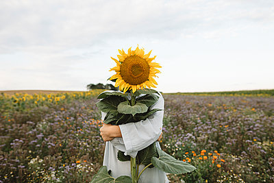 Sunflower covering face of a boy in a field - p300m2132083 by Katharina Mikhrin