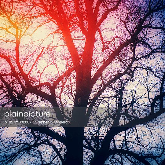 Winterwetter - p1057m982807 von Stephen Shepherd
