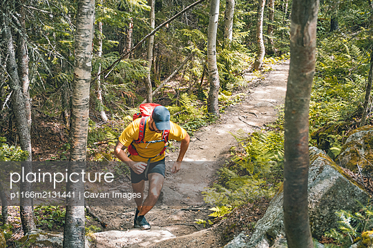 Long Distance Trail Running - p1166m2131441 by Cavan Images