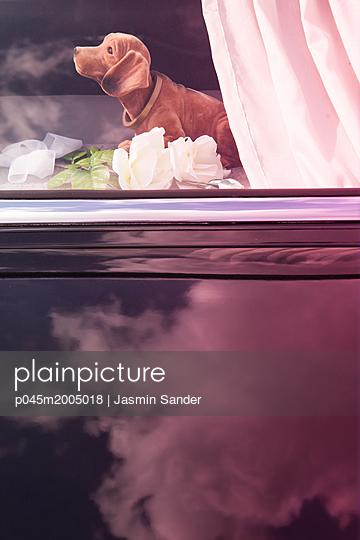 p045m2005018 by Jasmin Sander