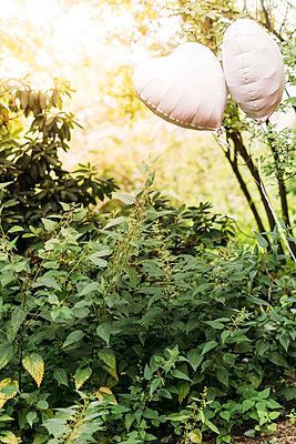 Herzförmige Luftballons vor grünem Hintergrund - p1076m1588883 von TOBSN