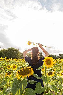 Frau im Sonnenblumenfeld - p1396m1466895 von Hartmann + Beese