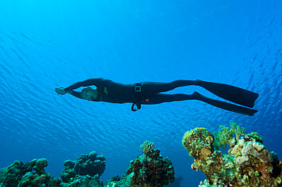 A diver in blue water Egypt - p31222576f by Lars Thulin