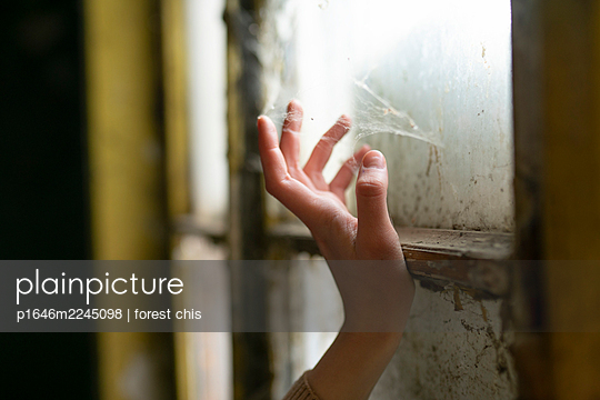 Female hand touching spider's web at the window - p1646m2245098 by Slava Chistyakov