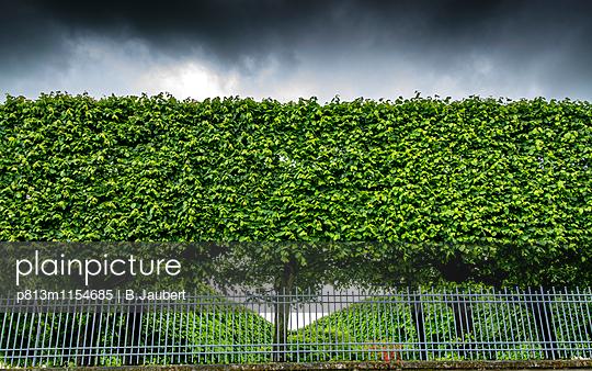 Hedge bordering property - p813m1154685 by B.Jaubert