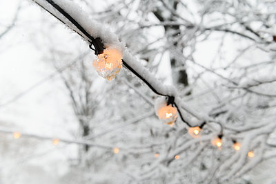 Snow on fairy lights - p1427m2169148 by Jamie Grill